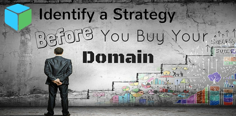 Identify a Strategy before you buy your domain BL
